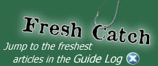 Fresh Catch - Jump to the freshest articles in the Guide Log.